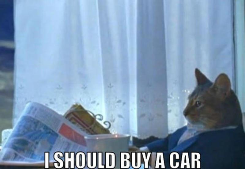 I_should_buy_a_car