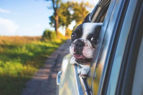 Fuel Saving - Window Aerodynamics
