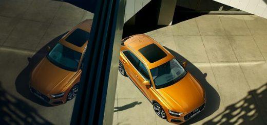 Audi Q8 - Top View